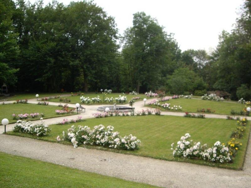 Dc paysagiste cr ation arrosage automatique entretien for Paysagiste creation jardin